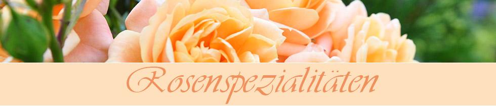 Rosengelee - Rosenspezialitäten